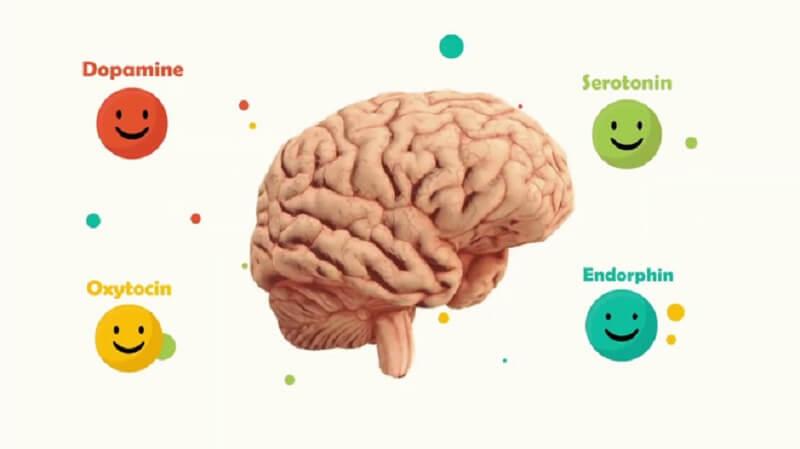 Cách chơi Brain Dots game hay và rèn luyện trí não cực đỉnh