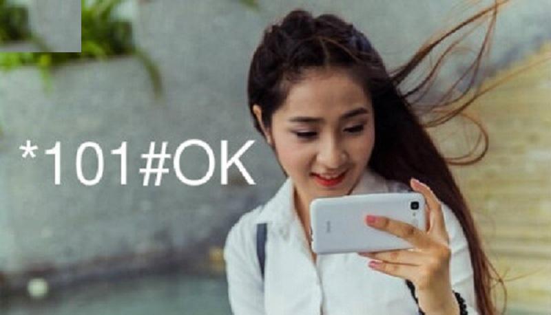 Cách kiểm tra số điện thoại đang dùng từ mạng Vietnamobile